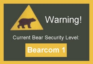 Bear Security Level