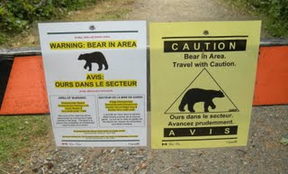 Bear warnings